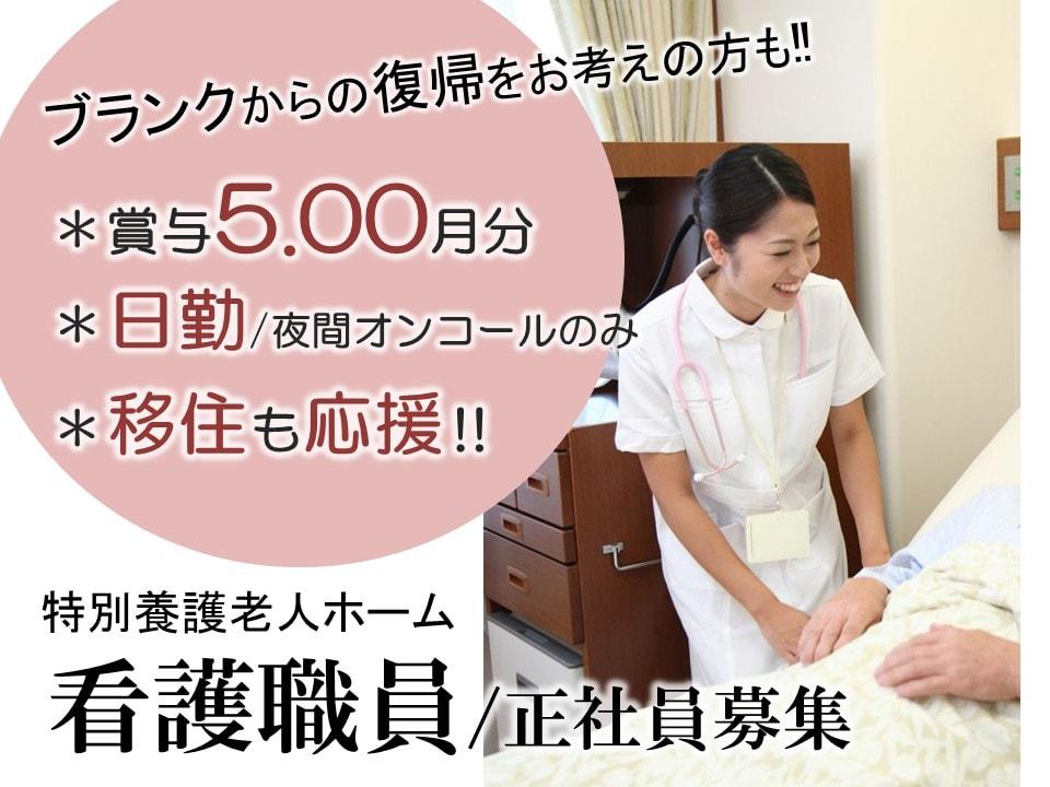日勤 賞与5月分の特養 正看護師 准看護師 イメージ